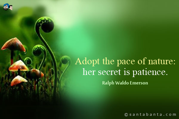 adopt-the-pace-of-nature-her-secret-is-patience-2