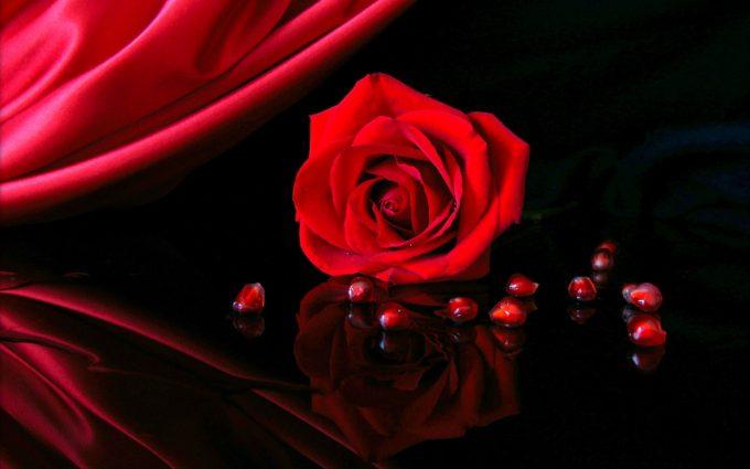 Red-Rose-In-Black-Background